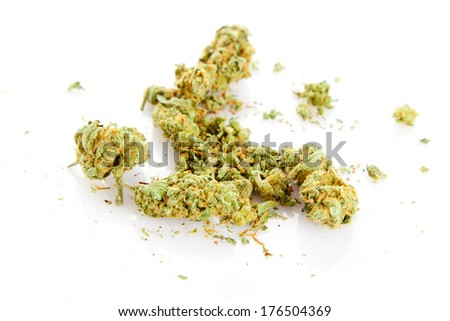Medical marijuana isolated on white background. - stock photo