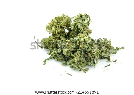 Medical marijuana isolated on white background. Therapeutic and medicinal cannabis - stock photo
