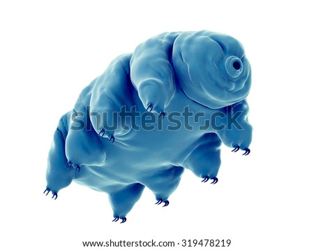 medically accurate illustration of a water bear - stock photo