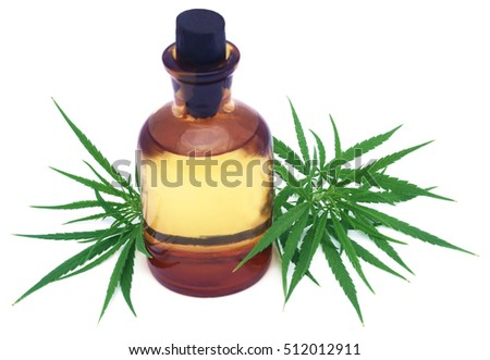 Medicinal cannabis leaves with extract oil in a bottle over white background