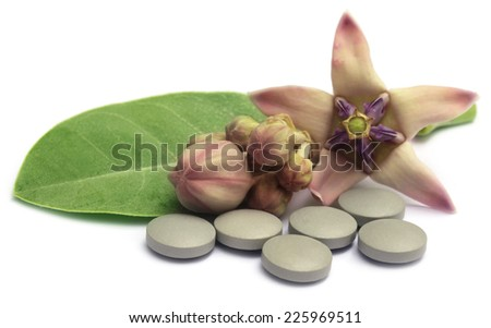 Medicinal Crown flower with pills over white background - stock photo