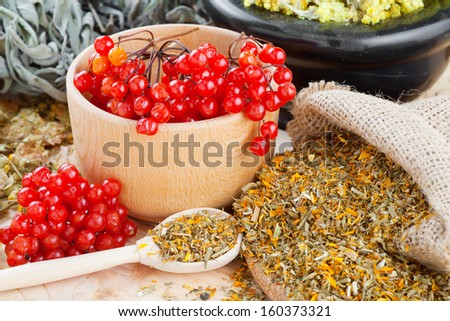 medicinal herbs and healthy berries on table, herbal medicine - stock photo