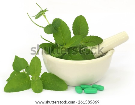 Medicinal herbs on mortar with pestle and pills over white background - stock photo