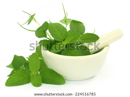 Medicinal herbs with mortar and pestle over white background - stock photo