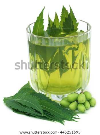 Medicinal neem extract with fruits and leaves over white background - stock photo