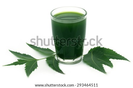 Medicinal neem leaves with extract over white background - stock photo