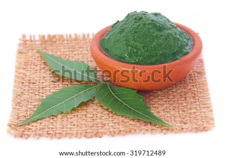 Medicinal neem leaves with ground paste over white background - stock photo