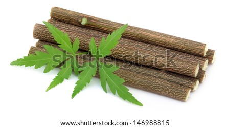 Medicinal neem leaves with twigs - stock photo