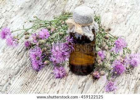 Medicinal plant Centaurea jacea (brown knapweed or brownray knapweed) and pharmaceutical bottle on old table. Used in herbal medicine as well as a good honey plant - stock photo