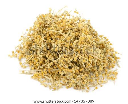 Medicinal plant. Dry Sagebrush - stock photo