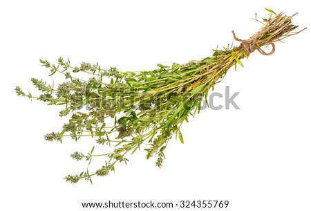 Medicinal plant: Thymus marschallianus - stock photo