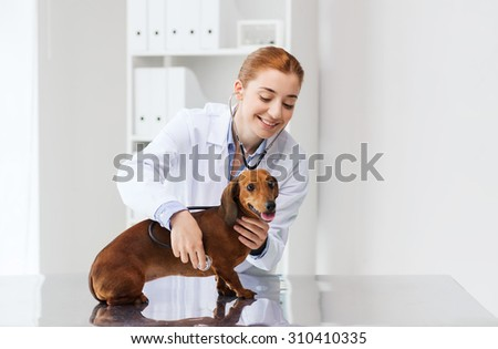 medicine, pet, animals, health care and people concept - happy veterinarian doctor with stethoscope examining dachshund dog at vet clinic - stock photo