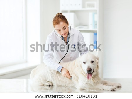 medicine, pet, animals, health care and people concept - happy veterinarian or doctor with stethoscope checking up golden retriever dog at vet clinic - stock photo