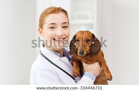 medicine, pet, animals, health care and people concept - happy veterinarian or holding dachshund dog at vet clinic - stock photo