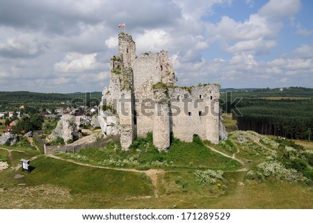 Medieval castle in Mirow, Poland - stock photo