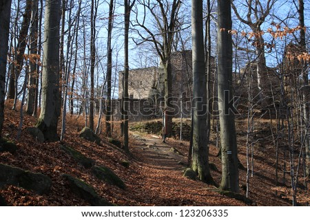 Medieval castle ruins in forest, Poland - stock photo