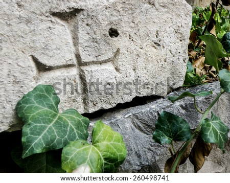 Medieval cross on stone wrapped with ivy - stock photo