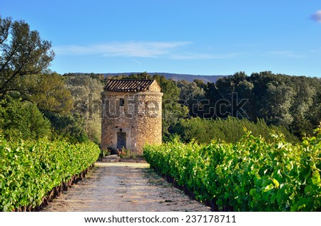 Medieval farmhouse and vineyards in Vaucluse at sunset time, Provence, France. - stock photo
