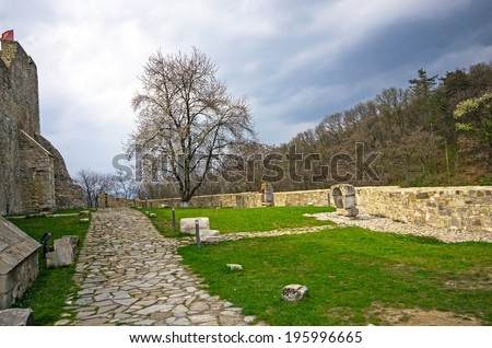 Medieval fortress of Neamt, walls and ruins