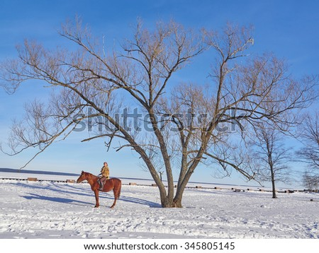 Medieval girl on a horse in the winter - stock photo