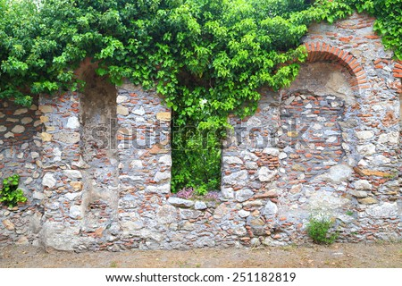 Medieval ruins covered with green ivy leaves inside the Byzantine city of Mystras, Greece - stock photo