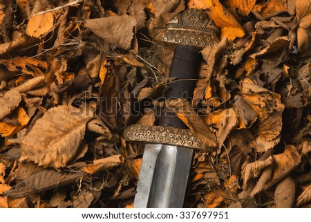Medieval sword against the backdrop of autumn leaves - stock photo