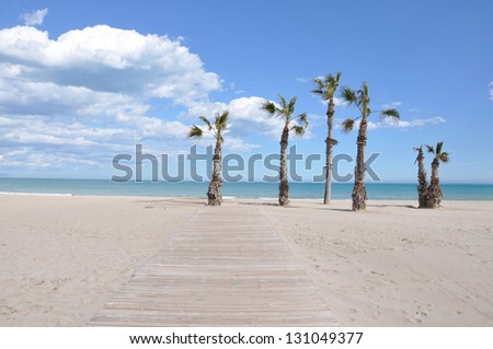 Mediterranean Beach in Costa Blanca San Juan Alicante Spain Europe