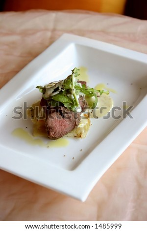 Mediterranean cuisine medium-well beef in a light cream sauce - stock photo