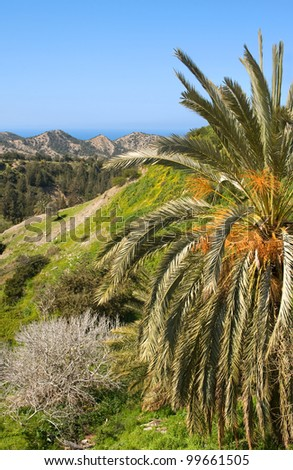 Mediterranean landscape, North Cyprus - stock photo