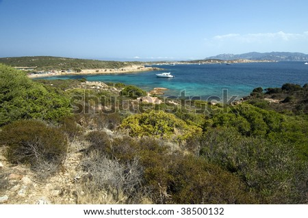 Mediterranean scrub vegetation and fantastic blue sea in Caprera island - Archipelago of La Maddalena - Best of Italy