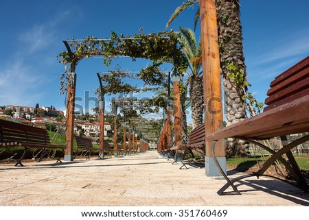Mediterranean style city park with palm trees and grapes Israel - stock photo