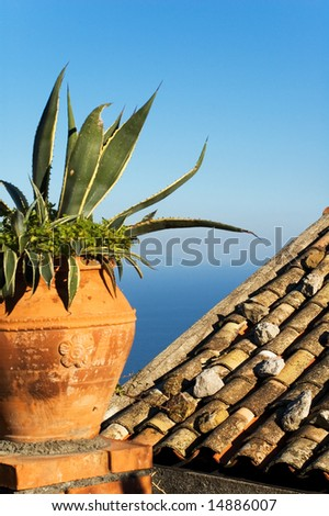 Mediterranean view with vase, agave and roof - stock photo