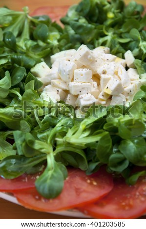 Mediterranenan food: green salad with tomato and mozzarella - stock photo