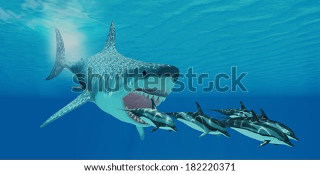 Megalodon Attack - A huge Megalodon shark swims after a pod of Striped dolphins. - stock photo