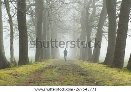 Melancholy emotions concept: man walking alone in a lane on a foggy, spring morning. - stock photo
