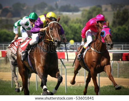 MELBOURNE - FEBRUARY 21: Sensational News is ridden to the line to finish a close second to Madam Melba in the Windy Peak Maiden at Yarra Glen on February 21, 2010 near Melbourne, Australia.