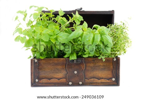 melissa, thyme and basil in an old box on white background - stock photo