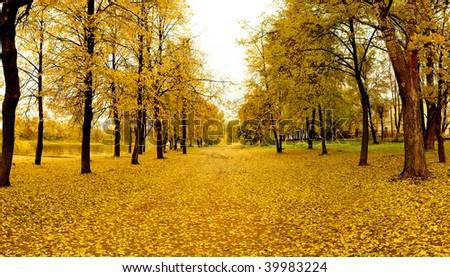 Mellow autumn in park in Vitebsk - stock photo