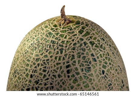 Melon closeup isolated on white