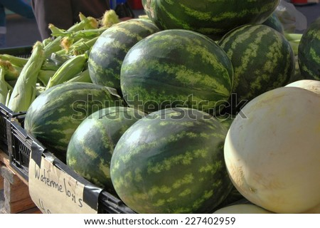 Melons for sale - stock photo