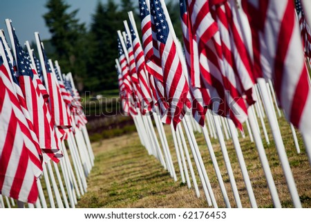 Memorial Day in USA - American flags arranged in rows outdoors - stock photo