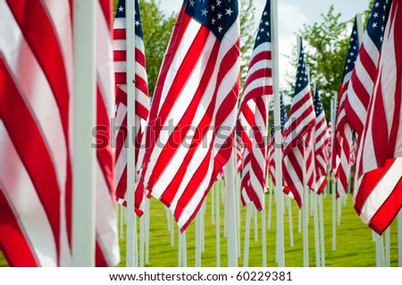 Memorial with American flags on green grass - stock photo