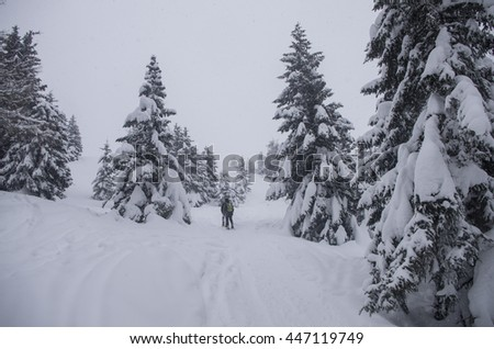 Men between trees during a blizzard