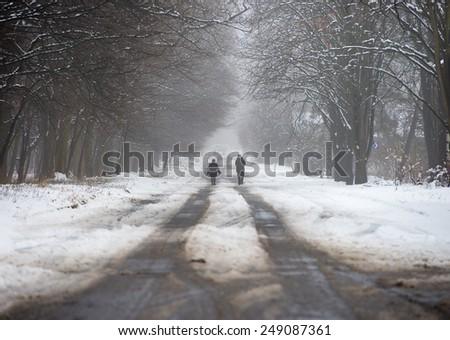 men walking in the winter park - stock photo