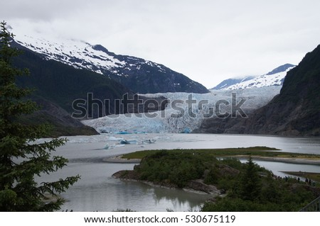 Mendehall Glacier and Trees