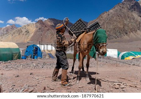 MENDOZA, ARGENTINA - JAN 15: John Doe Arriero or Muleteer loading a Mule.  Mules are the way for move the climber's cargo the 27 KM to the base camp. Jan 15, 2014 in Aconcagua Mount, Argentina  - stock photo