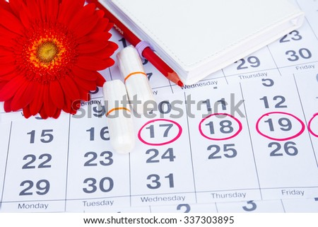 Menses Stock Photos  Royalty Free Images  amp  Vectors   Shutterstock Shutterstock Menstruation calendar with notebook  cotton tampons  red flower  Woman critical days  woman