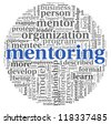 Mentoring related words concept in tag cloud on white - stock photo