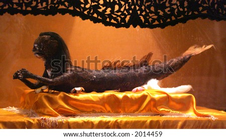 """Mermaid at """"Exhibition on Mysterious, Genie, Ghost, Coffin & ....."""" - stock photo"""
