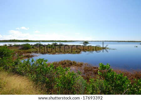 Merritt Island National Wildlife Reserve #1 - stock photo